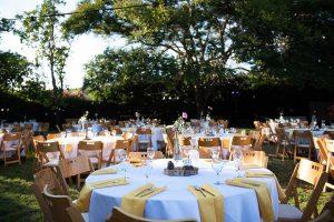 אדווה אופיר - חתונה חברתית